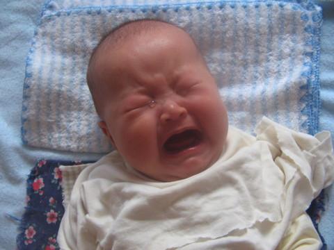 宝宝的珍珠倒卷帘