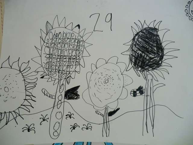 线描画 向日葵