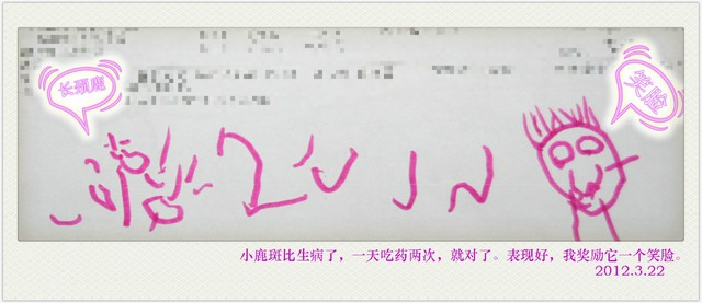 journal_insert_pic_78613221