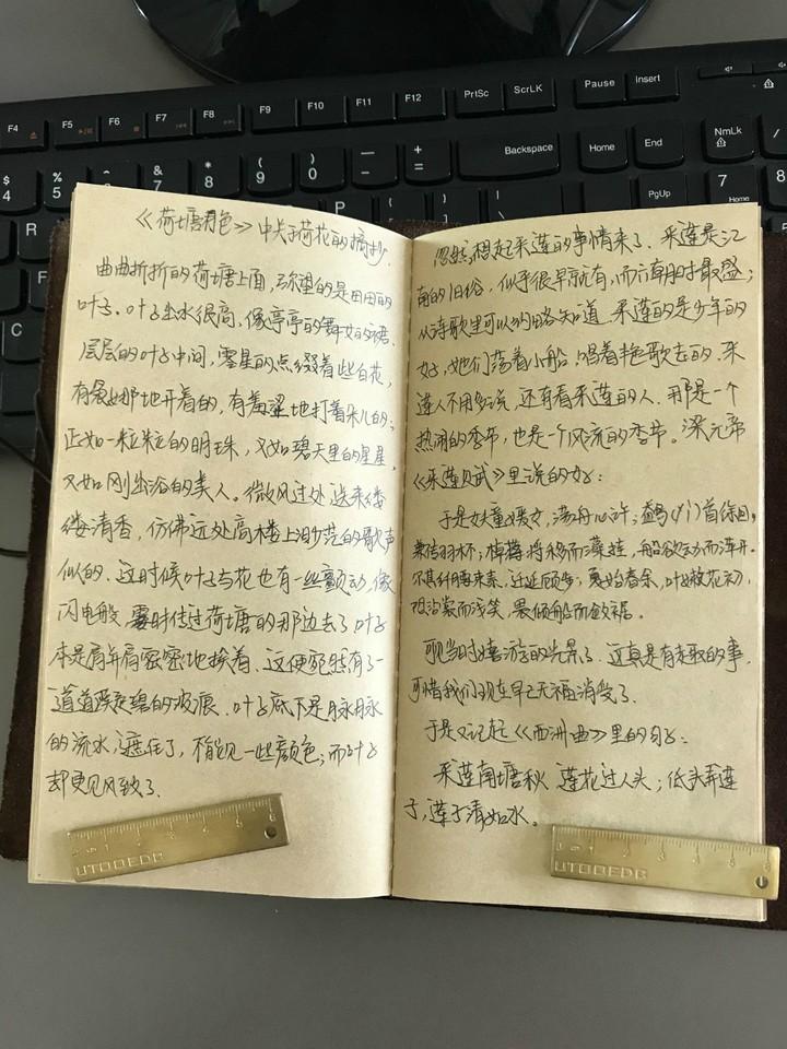 journal_insert_pic_1073304616